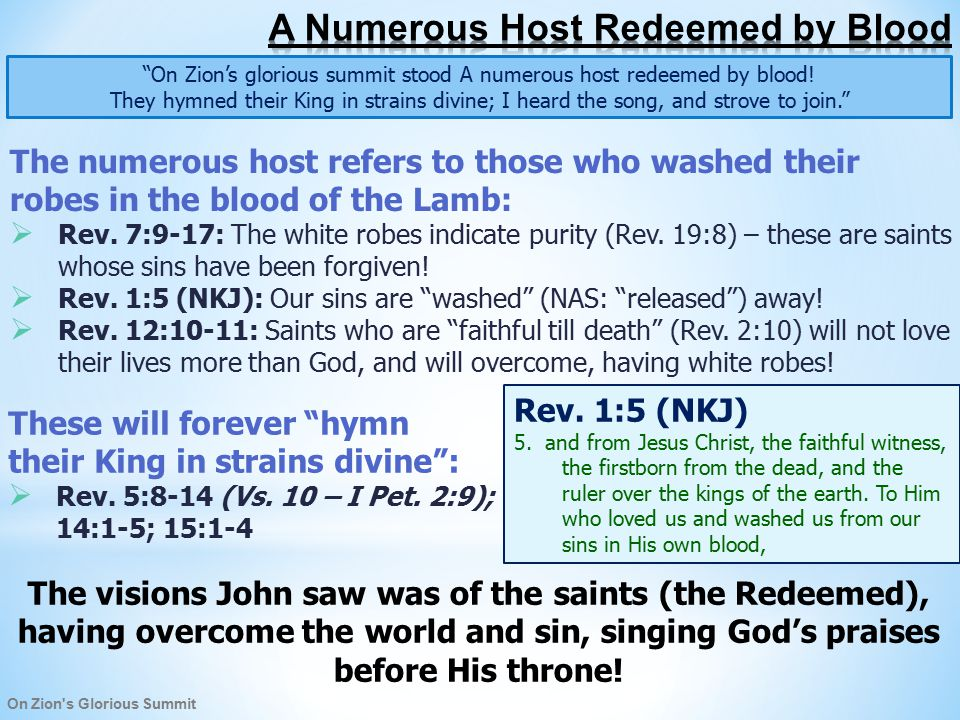 On Zion s Glorious Summit On Zion's glorious summit stood A numerous host redeemed by blood.