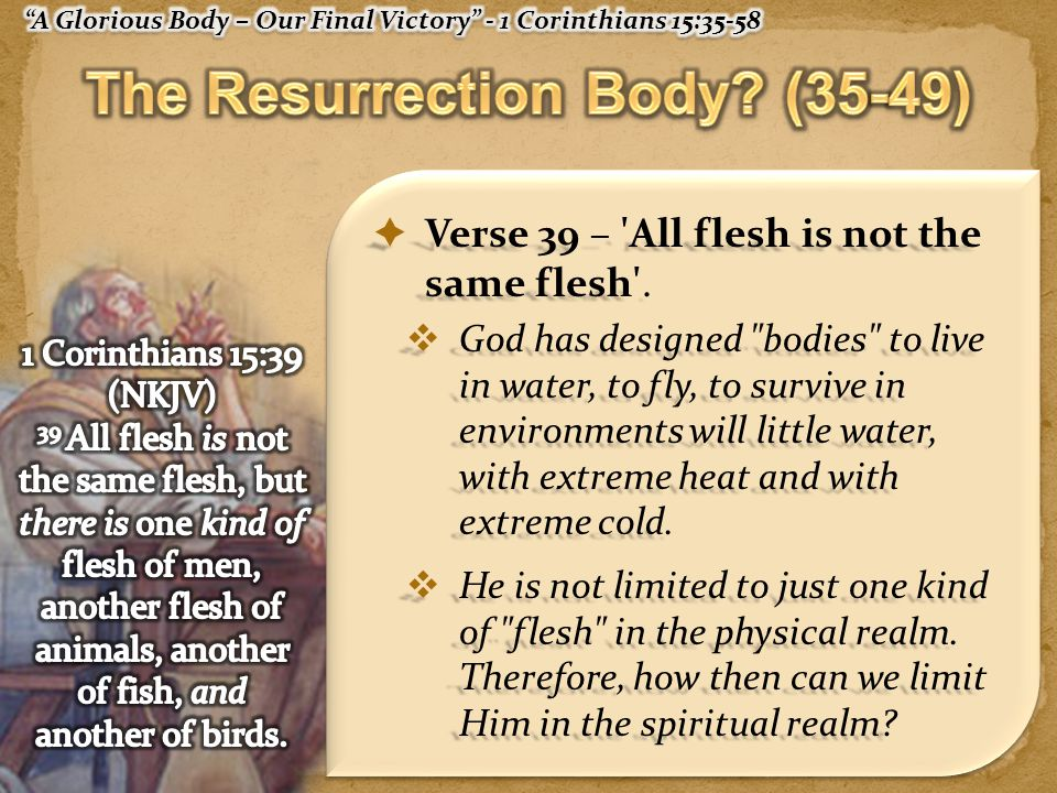 Verse 39 – All flesh is not the same flesh .
