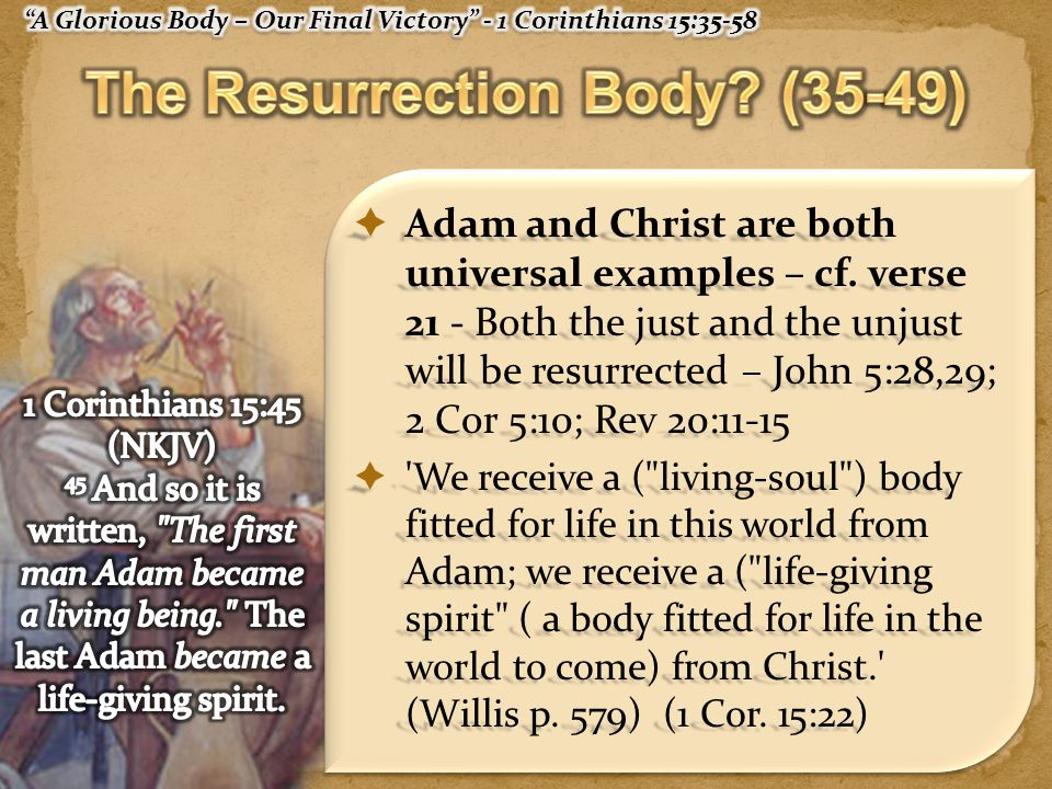  Adam and Christ are both universal examples – cf.
