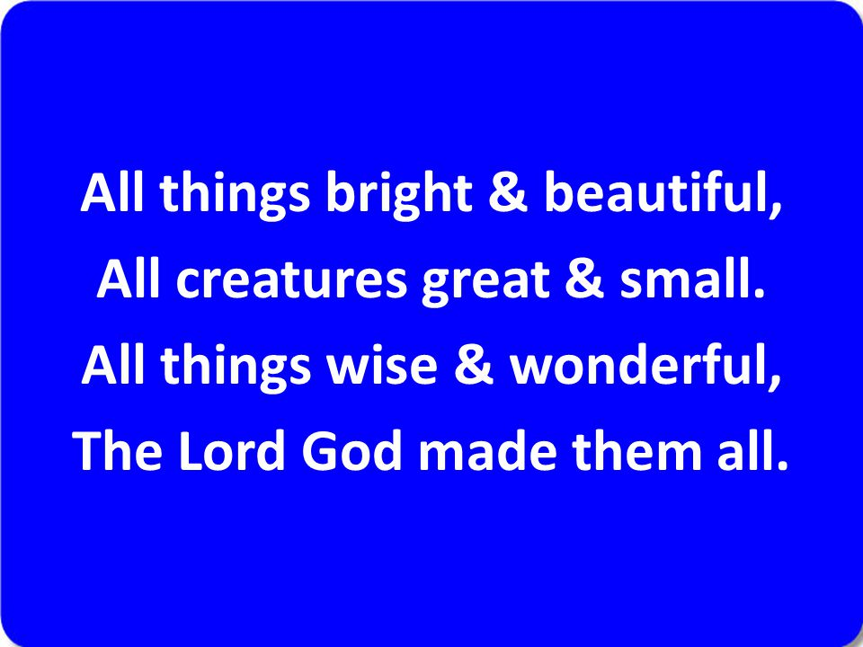 All things bright & beautiful, All creatures great & small. All things wise & wonderful, The Lord God made them all.