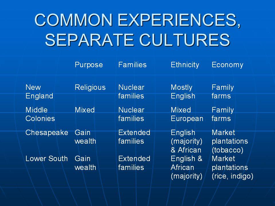COMMON EXPERIENCES, SEPARATE CULTURES