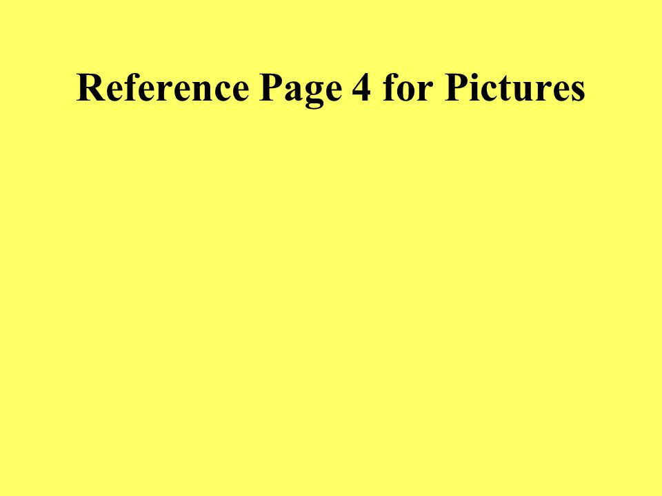 Reference Page 3 for Pictures