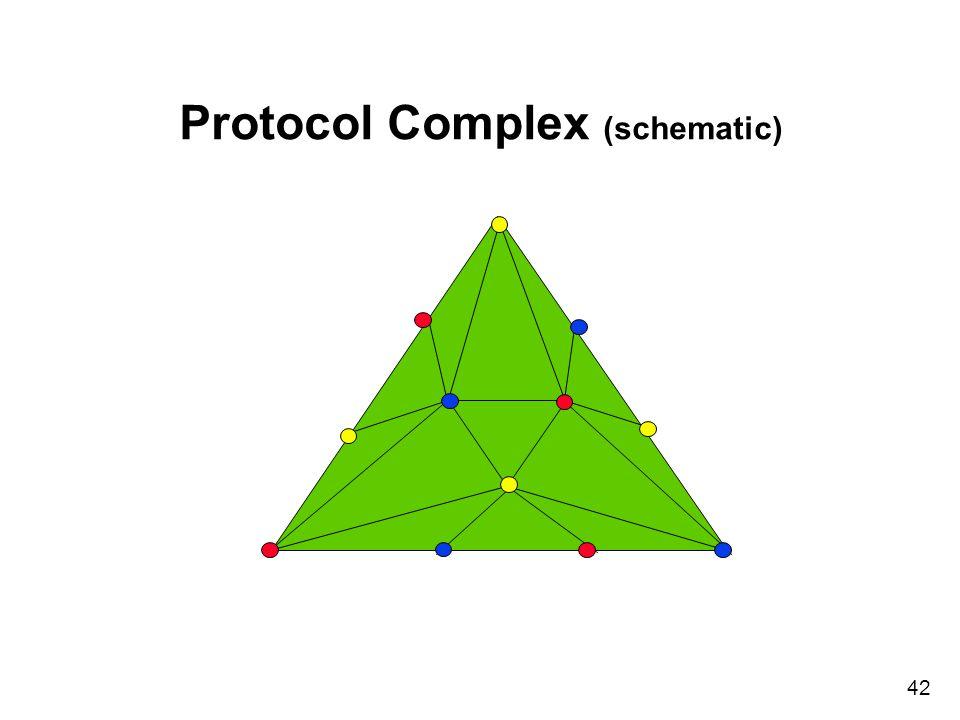 42 Protocol Complex (schematic)