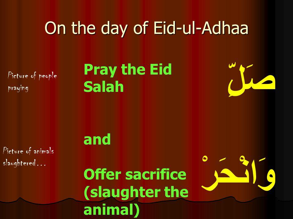 صَلِّ وَانْحَرْ Pray the Eid Salah and Offer sacrifice (slaughter the animal) On the day of Eid-ul-Adhaa Picture of animals slaughtered… Picture of pe