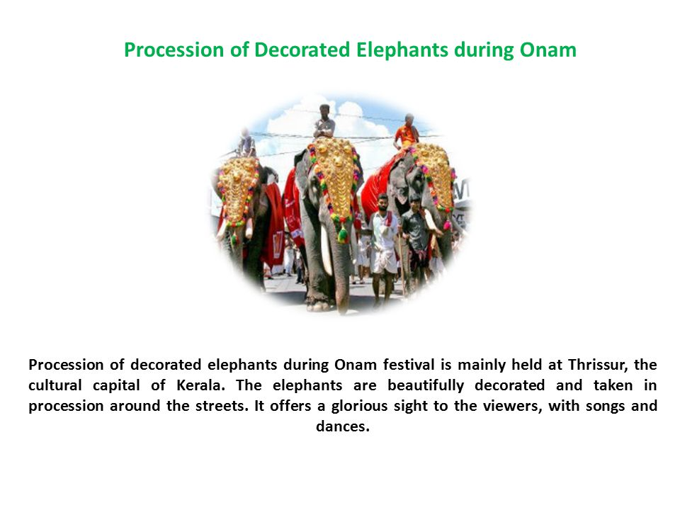Procession of Decorated Elephants during Onam Procession of decorated elephants during Onam festival is mainly held at Thrissur, the cultural capital of Kerala.