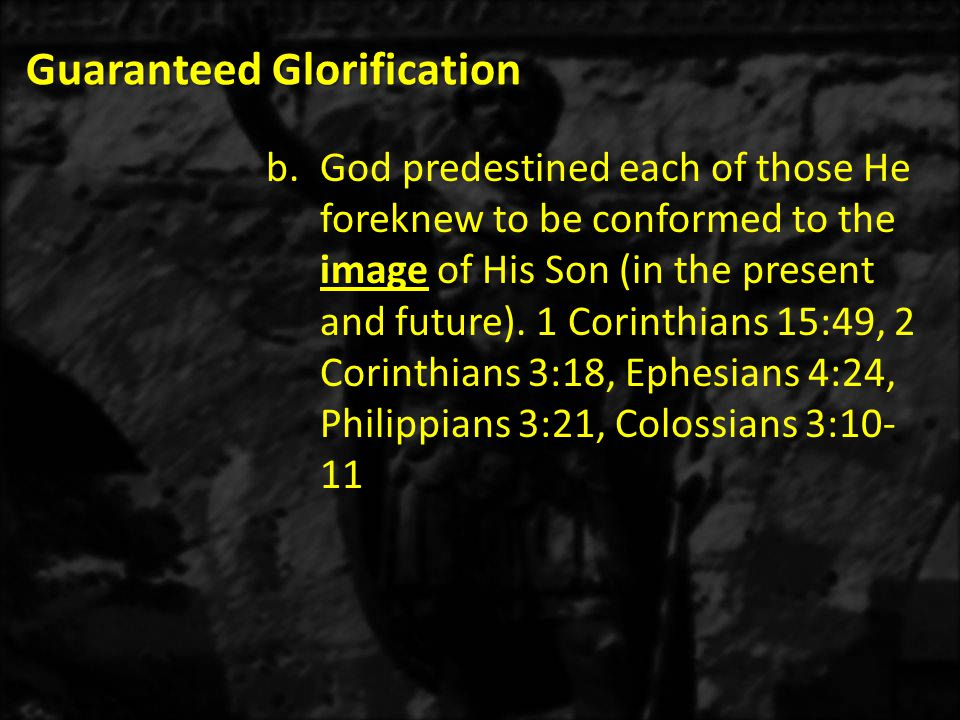 Guaranteed Glorification b.God predestined each of those He foreknew to be conformed to the image of His Son (in the present and future).