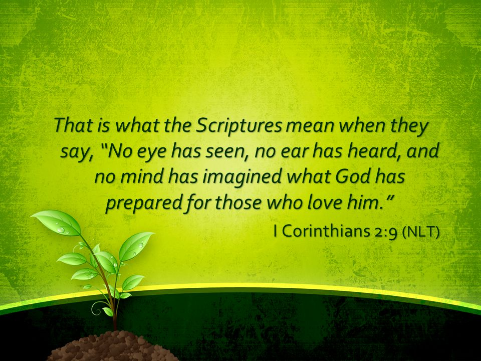 """That is what the Scriptures mean when they say, """"No eye has seen, no ear has heard, and no mind has imagined what God has prepared for those who love"""