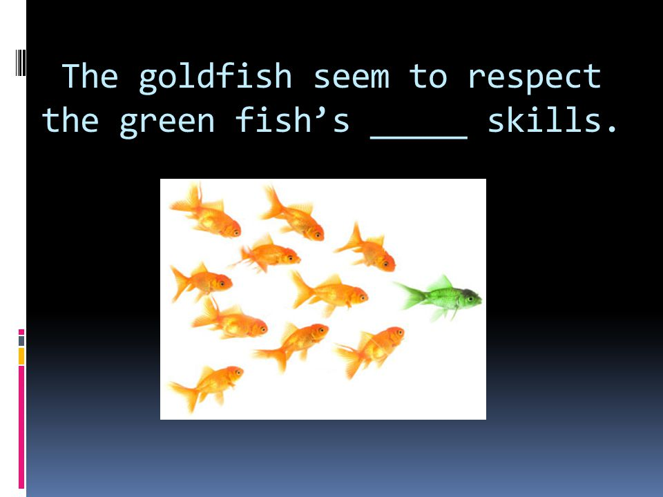 The goldfish seem to respect the green fish's _____ skills.