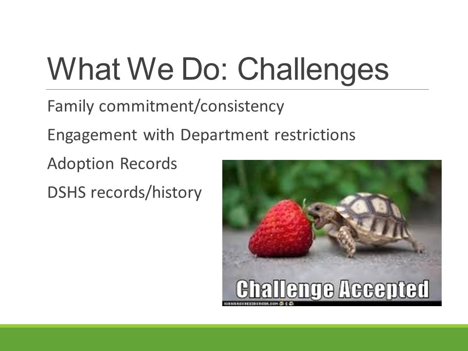 What We Do: Challenges Family commitment/consistency Engagement with Department restrictions Adoption Records DSHS records/history
