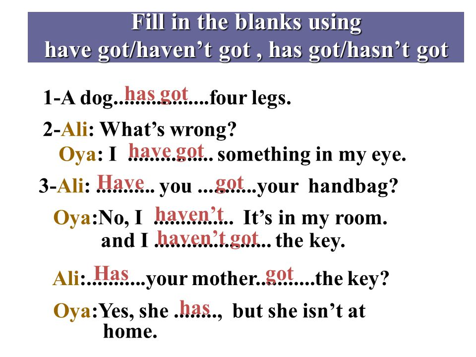 Fill in the blanks using have got/haven't got, has got/hasn't got 1-A dog..................four legs.