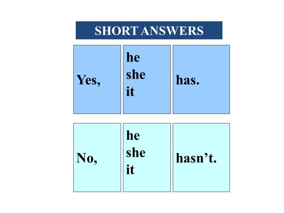 Yes, he she it has. No, he she it hasn't. SHORT ANSWERS
