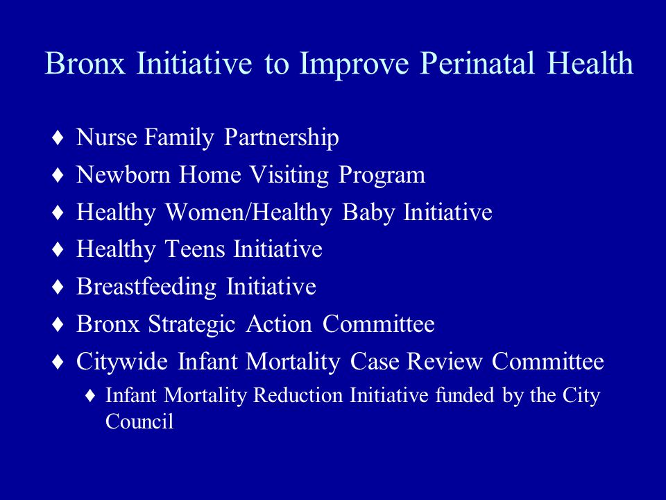 Bronx Initiative to Improve Perinatal Health ♦Nurse Family Partnership ♦Newborn Home Visiting Program ♦Healthy Women/Healthy Baby Initiative ♦Healthy Teens Initiative ♦Breastfeeding Initiative ♦Bronx Strategic Action Committee ♦Citywide Infant Mortality Case Review Committee ♦Infant Mortality Reduction Initiative funded by the City Council