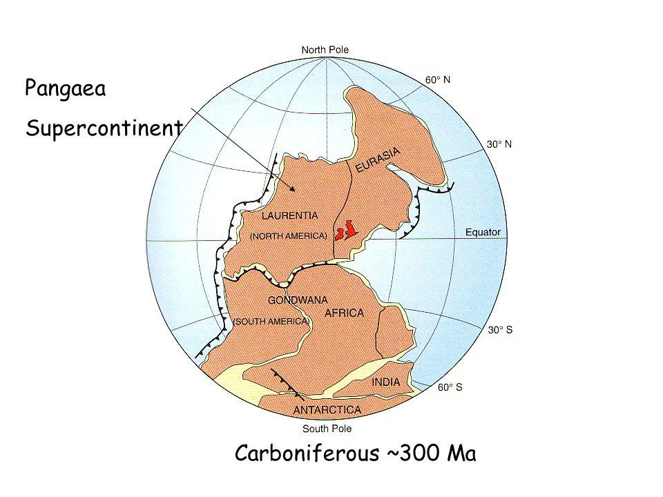 Pre-Cambrian ~ 850 Ma Carboniferous ~300 Ma Pangaea Supercontinent