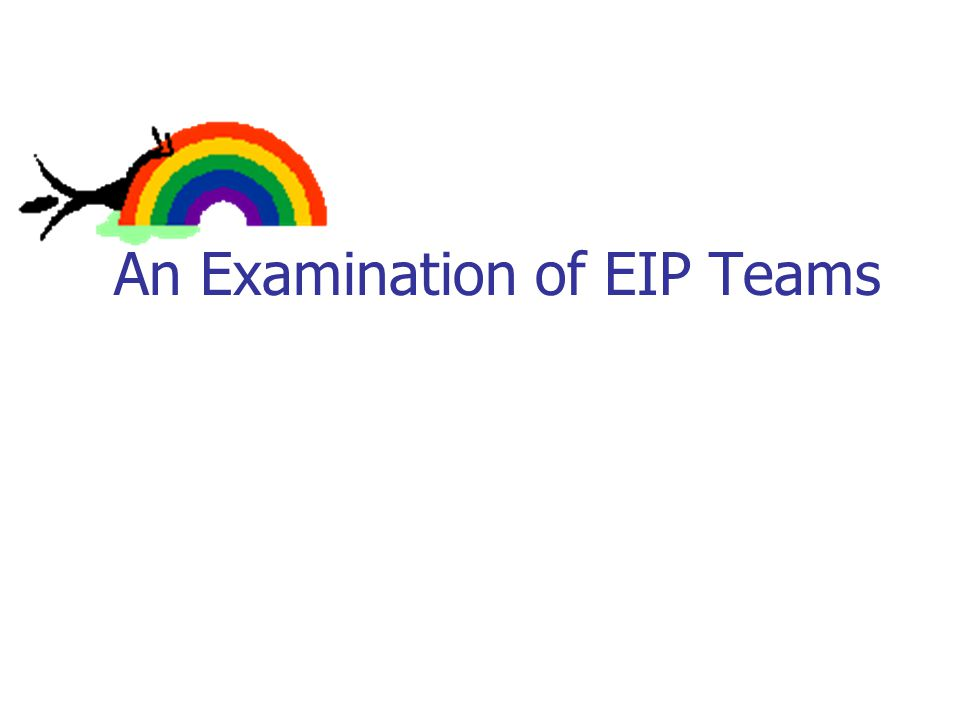 An Examination of EIP Teams