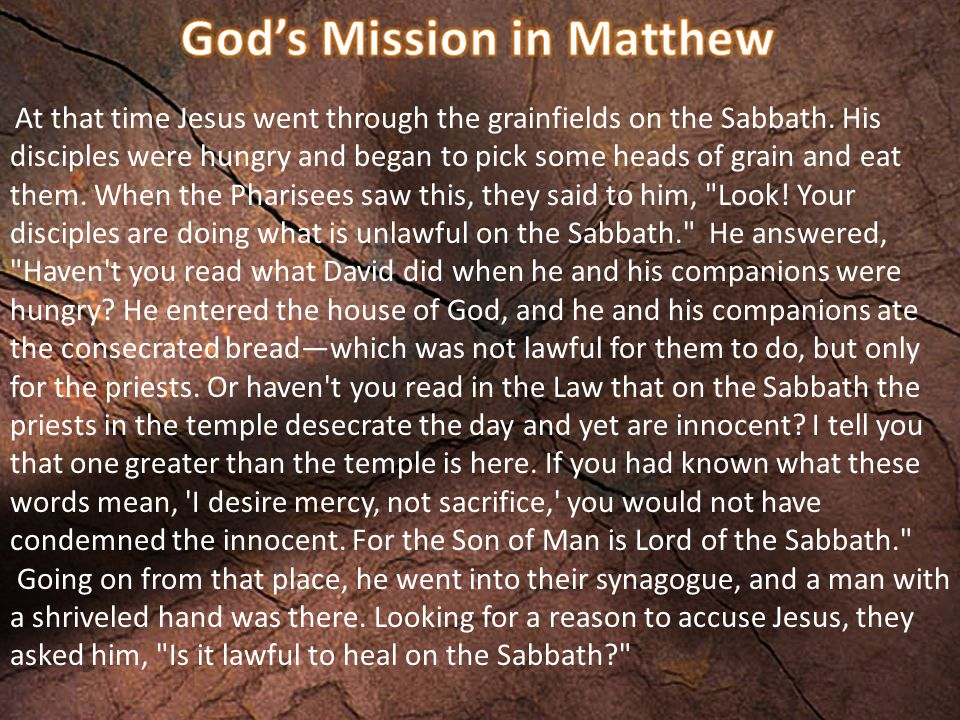 He said to them, If any of you has a sheep and it falls into a pit on the Sabbath, will you not take hold of it and lift it out.