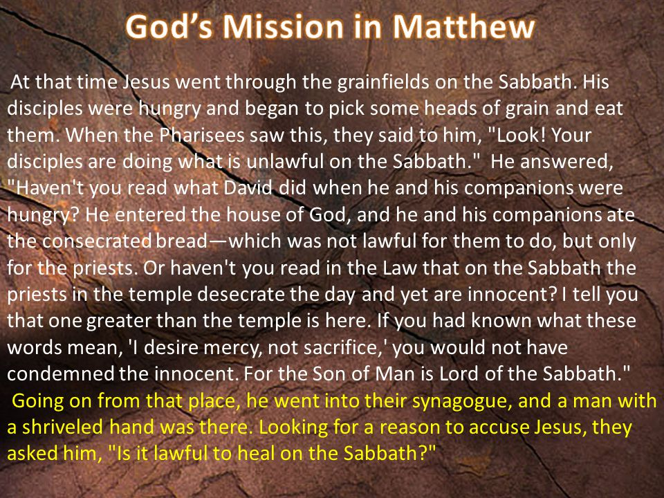 At that time Jesus went through the grainfields on the Sabbath. His disciples were hungry and began to pick some heads of grain and eat them. When the