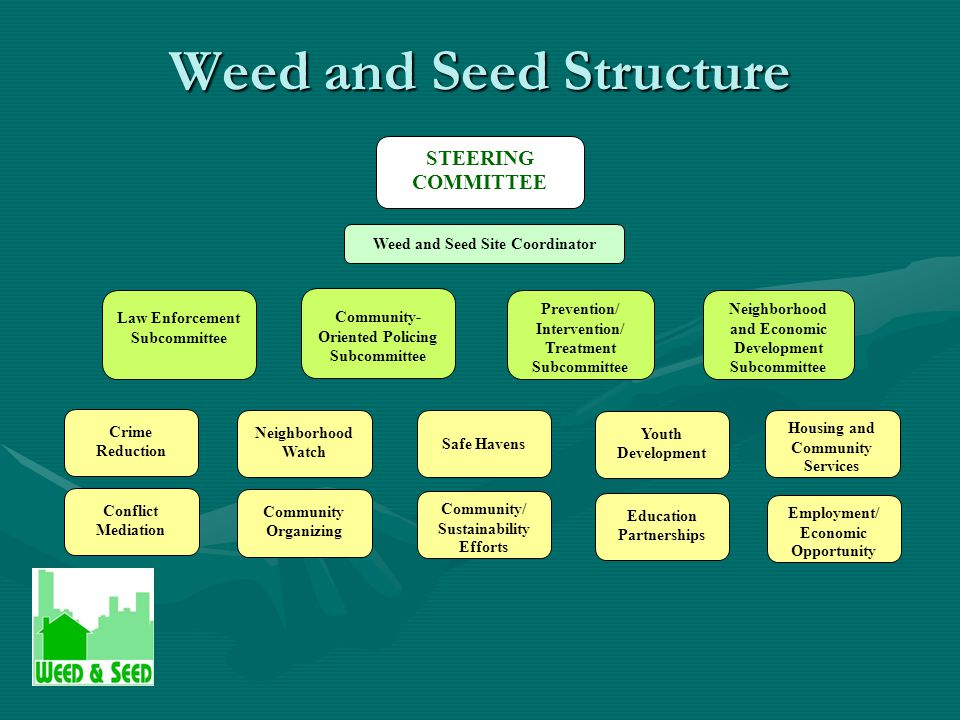 Weed and Seed Structure STEERING COMMITTEE Weed and Seed Site Coordinator Law Enforcement Subcommittee Community- Oriented Policing Subcommittee Prevention/ Intervention/ Treatment Subcommittee Neighborhood and Economic Development Subcommittee Conflict Mediation Crime Reduction Neighborhood Watch Community Organizing Safe Havens Community/ Sustainability Efforts Youth Development Education Partnerships Employment/ Economic Opportunity Housing and Community Services