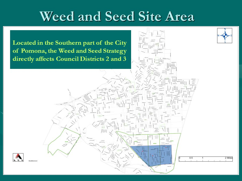 Located in the Southern part of the City of Pomona, the Weed and Seed Strategy directly affects Council Districts 2 and 3 Weed and Seed Site Area