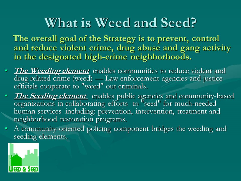 What is Weed and Seed.