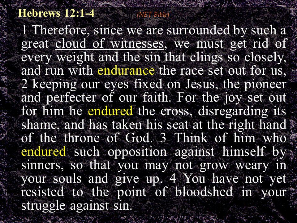 A More Desirable Endurance A More Desirable Endurance