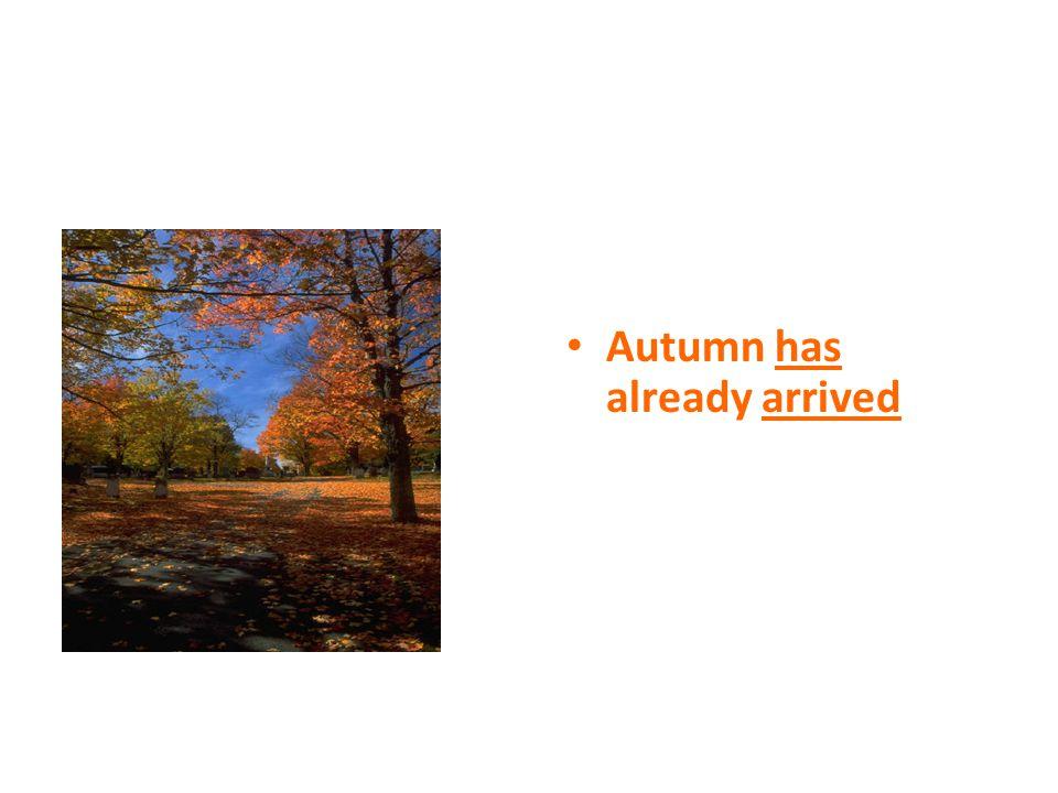 Autumn has already arrived