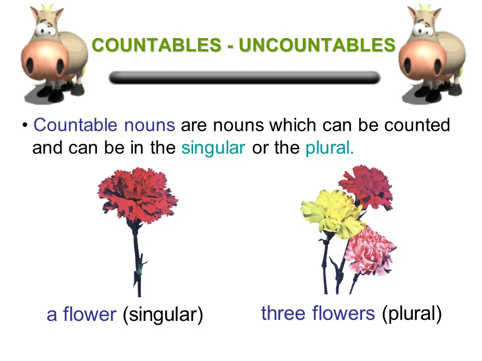 COUNTABLES UNCOUNTABLES