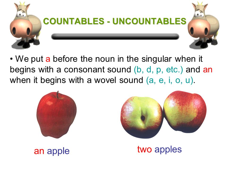 COUNTABLES - UNCOUNTABLES COUNTABLES - UNCOUNTABLES Countable nouns are nouns which can be counted and can be in the singular or the plural.