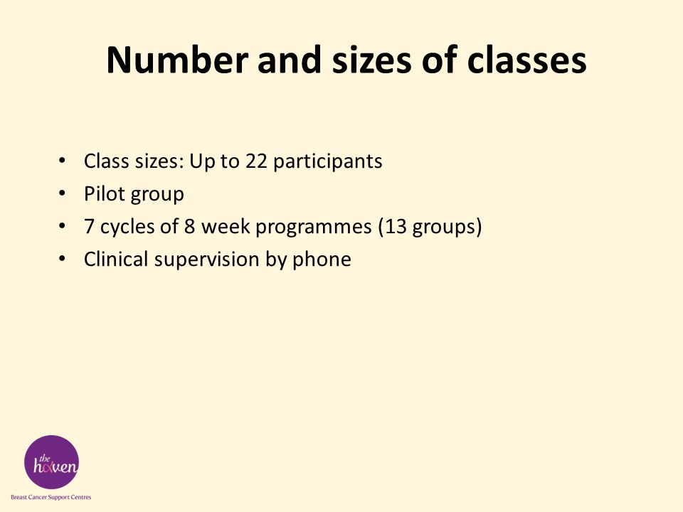 Number and sizes of classes Class sizes: Up to 22 participants Pilot group 7 cycles of 8 week programmes (13 groups) Clinical supervision by phone