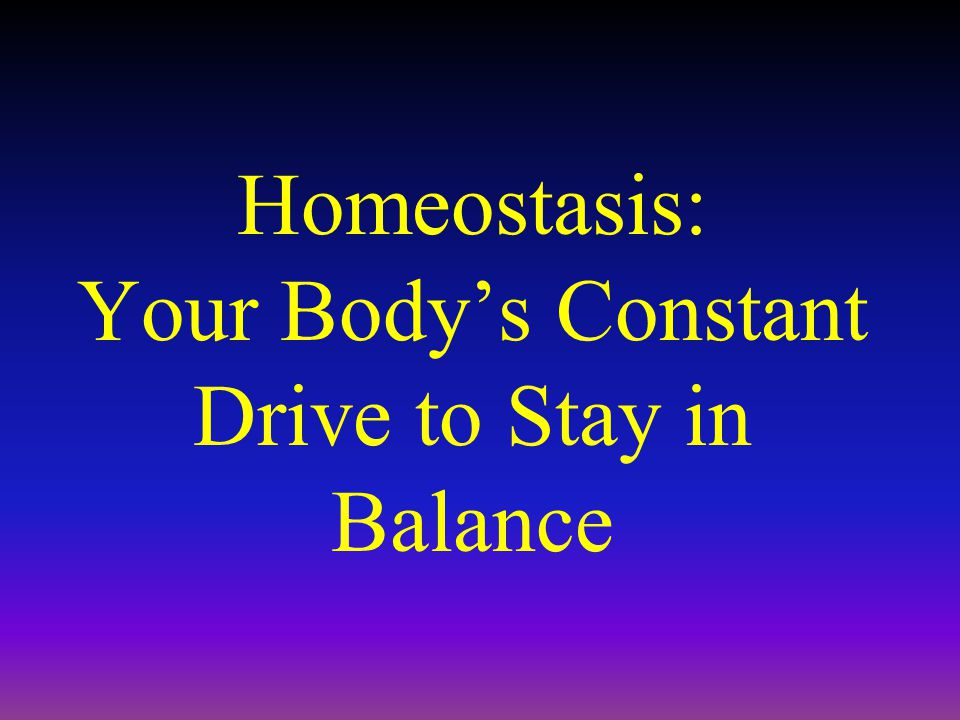 Homeostasis: Your Body's Constant Drive to Stay in Balance