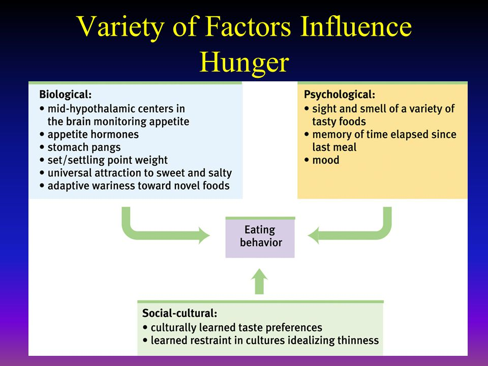 Variety of Factors Influence Hunger