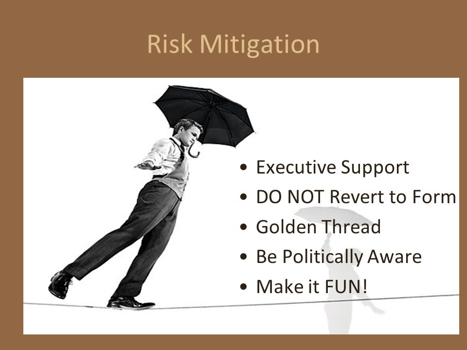 Risk Mitigation Executive Support DO NOT Revert to Form Golden Thread Be Politically Aware Make it FUN!