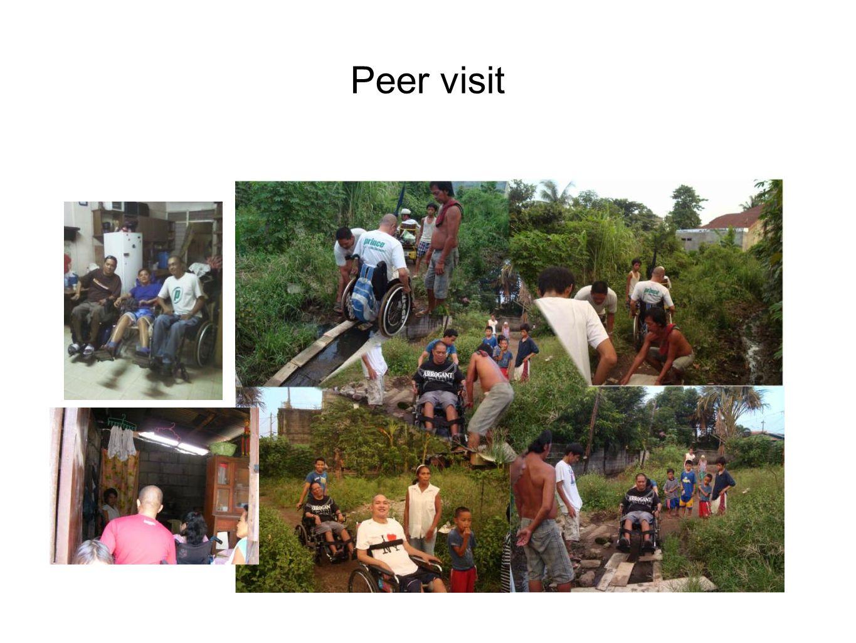 Peer visit