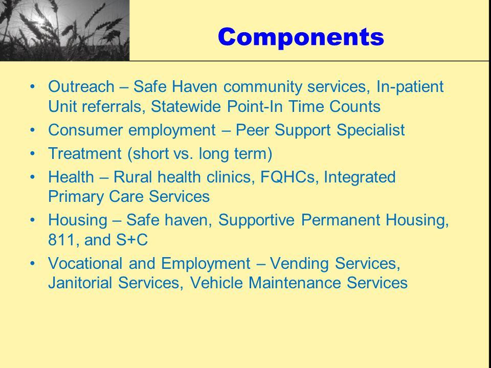Components Outreach – Safe Haven community services, In-patient Unit referrals, Statewide Point-In Time Counts Consumer employment – Peer Support Specialist Treatment (short vs.