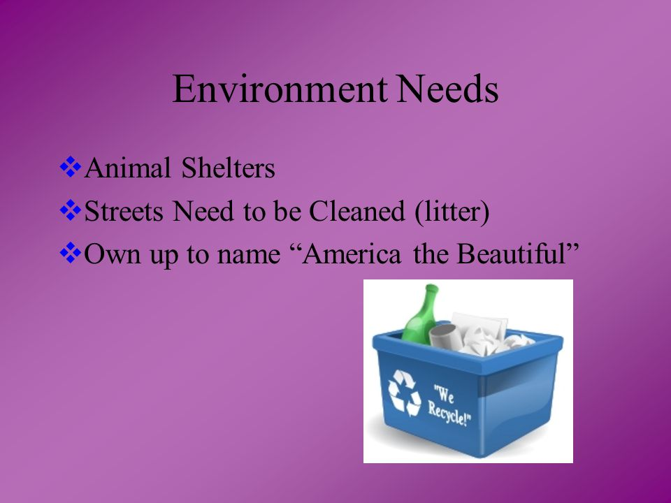 Environment Needs  Animal Shelters  Streets Need to be Cleaned (litter)  Own up to name America the Beautiful