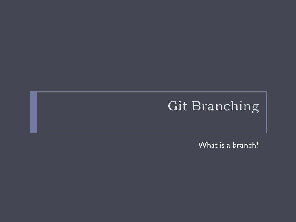 Git Branching What is a branch?