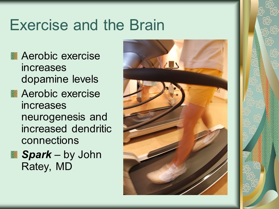 Exercise and the Brain Aerobic exercise increases dopamine levels Aerobic exercise increases neurogenesis and increased dendritic connections Spark – by John Ratey, MD