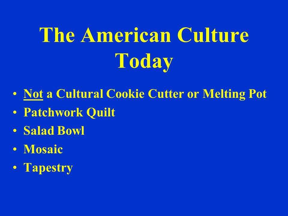 Minorities in USA Today 12% African American 15% Hispanic 4% Asian and Pacific Islanders 1% American Indian