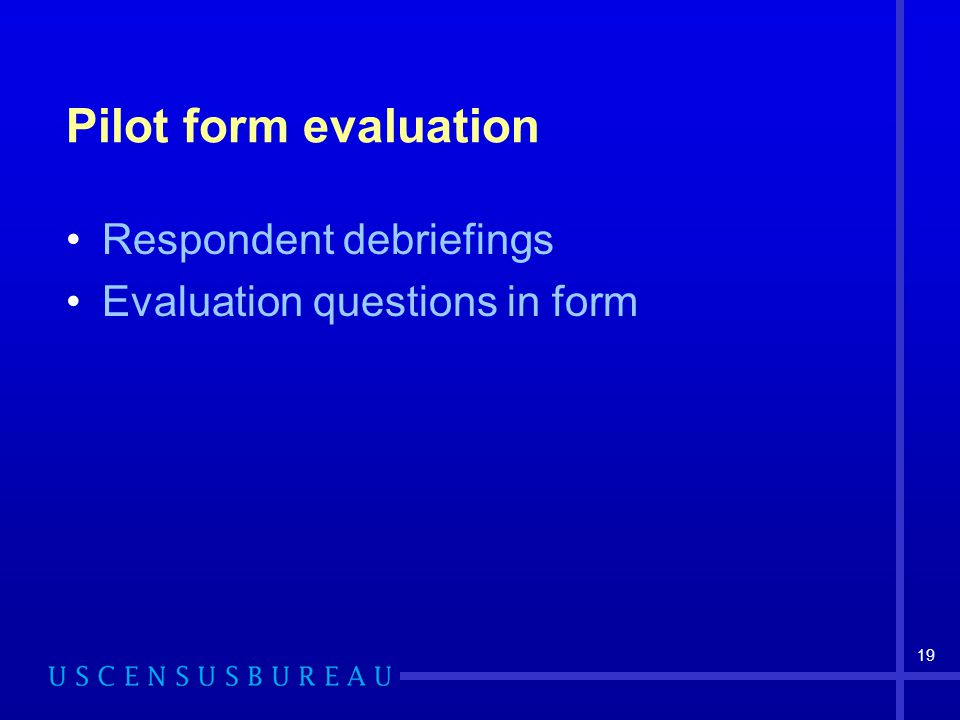 19 Pilot form evaluation Respondent debriefings Evaluation questions in form
