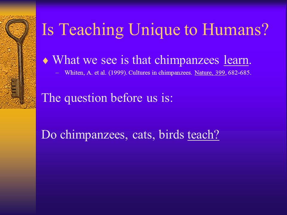 Is Teaching Unique to Humans?  What we see is that chimpanzees learn. –Whiten, A. et al. (1999). Cultures in chimpanzees. Nature, 399, 682-685. The q