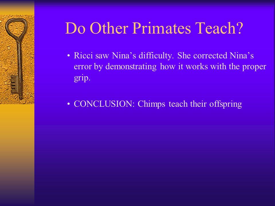 Do Other Primates Teach. Ricci saw Nina's difficulty.