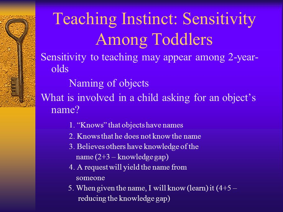 Teaching Instinct: Sensitivity Among Toddlers Sensitivity to teaching may appear among 2-year- olds Naming of objects What is involved in a child asking for an object's name.