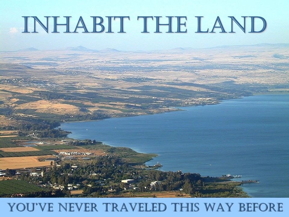 Inhabit the Land You've Never Traveled This Way Before