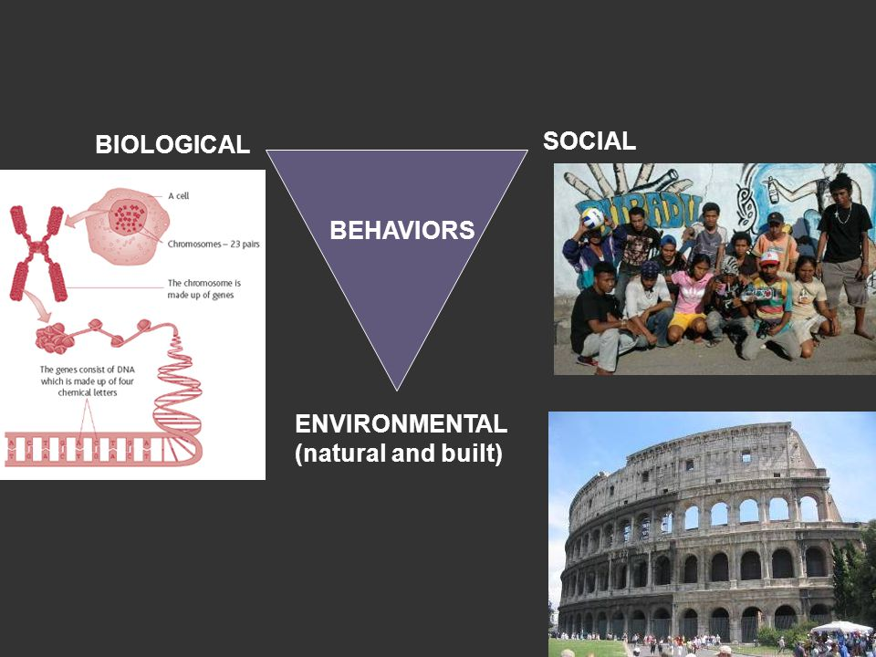 BEHAVIORS ENVIRONMENTAL (natural and built) BIOLOGICAL SOCIAL