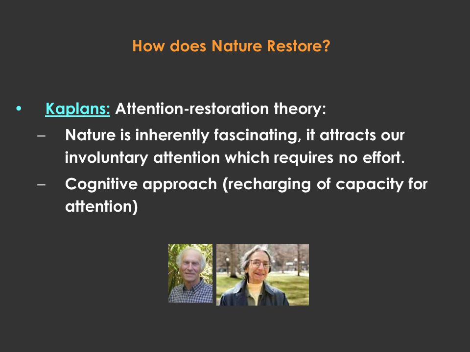 How does Nature Restore? Kaplans: Attention-restoration theory: – Nature is inherently fascinating, it attracts our involuntary attention which requir