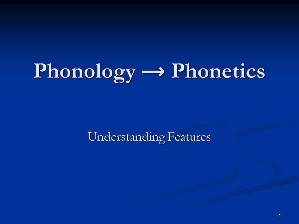 31 The Dimension SP Soft Palate in the phonology.Soft Palate in the phonology.