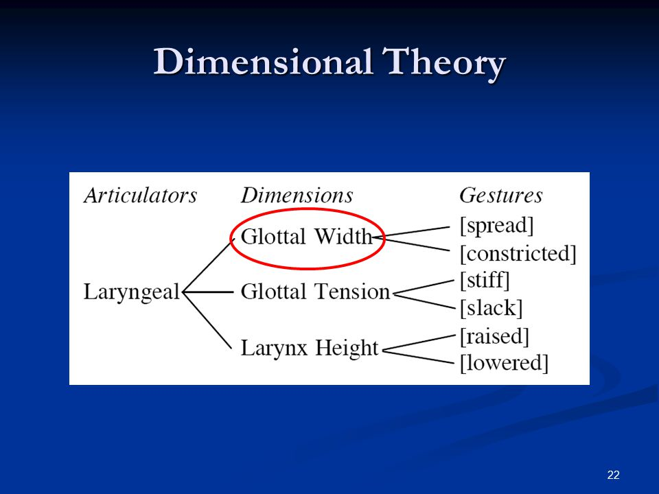 21 Dimesional Invariance Consistently Glottal Width or GW