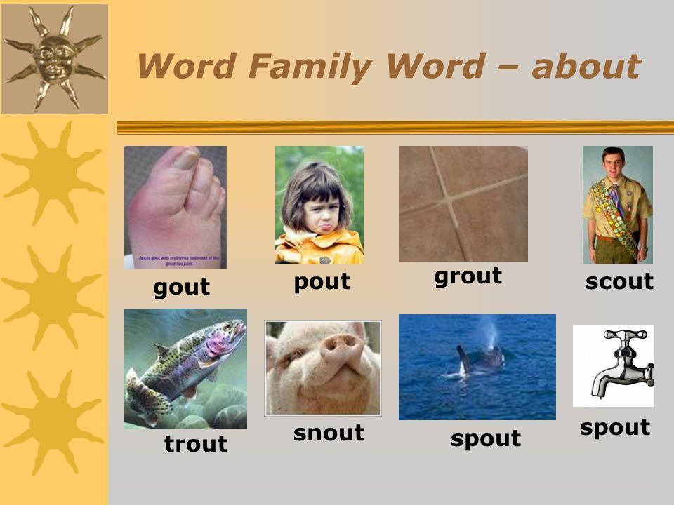 Word Family Word – about gout pout grout scout trout snout spout