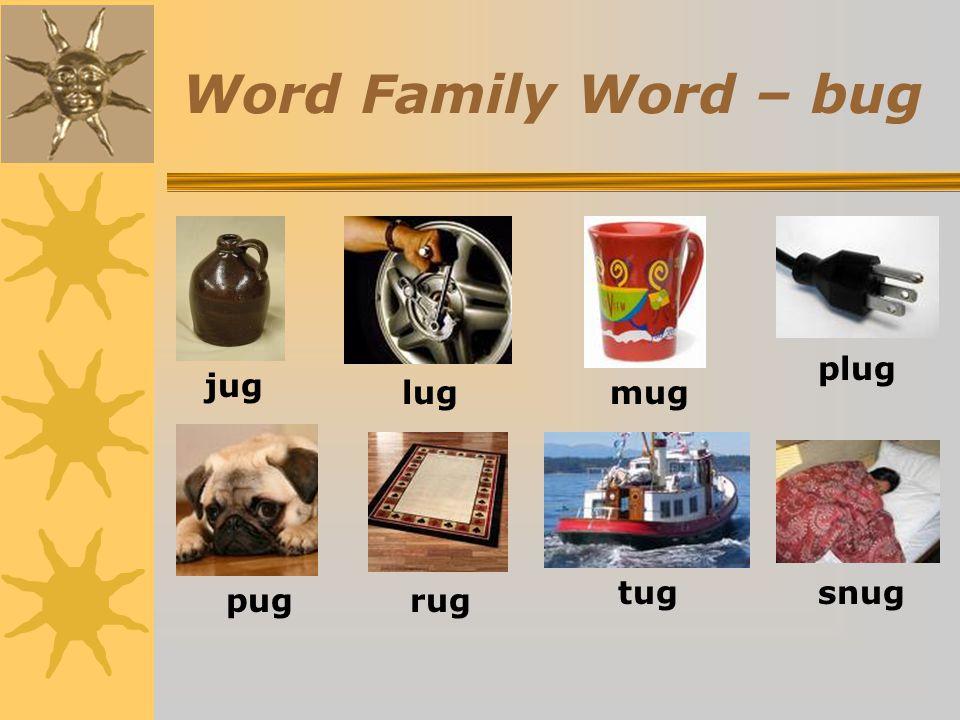 Word Family Word – bug jug lug mug plug pug rug tug snug