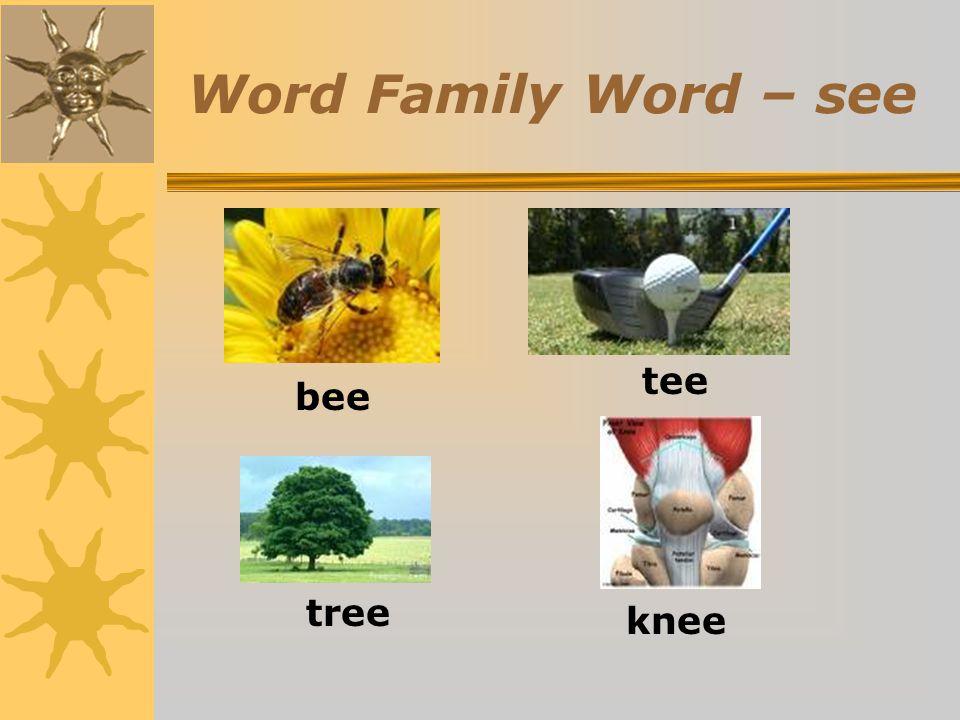Word Family Word – see bee tee tree knee