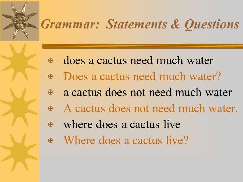 Grammar: Statements & Questions X does a cactus need much water X Does a cactus need much water? X a cactus does not need much water X A cactus does n